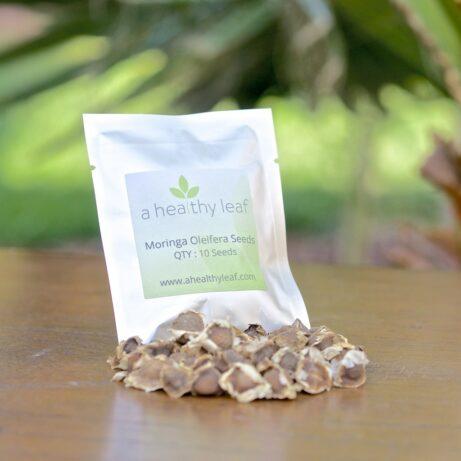 Moringa Oleifera Seeds 10 Pack