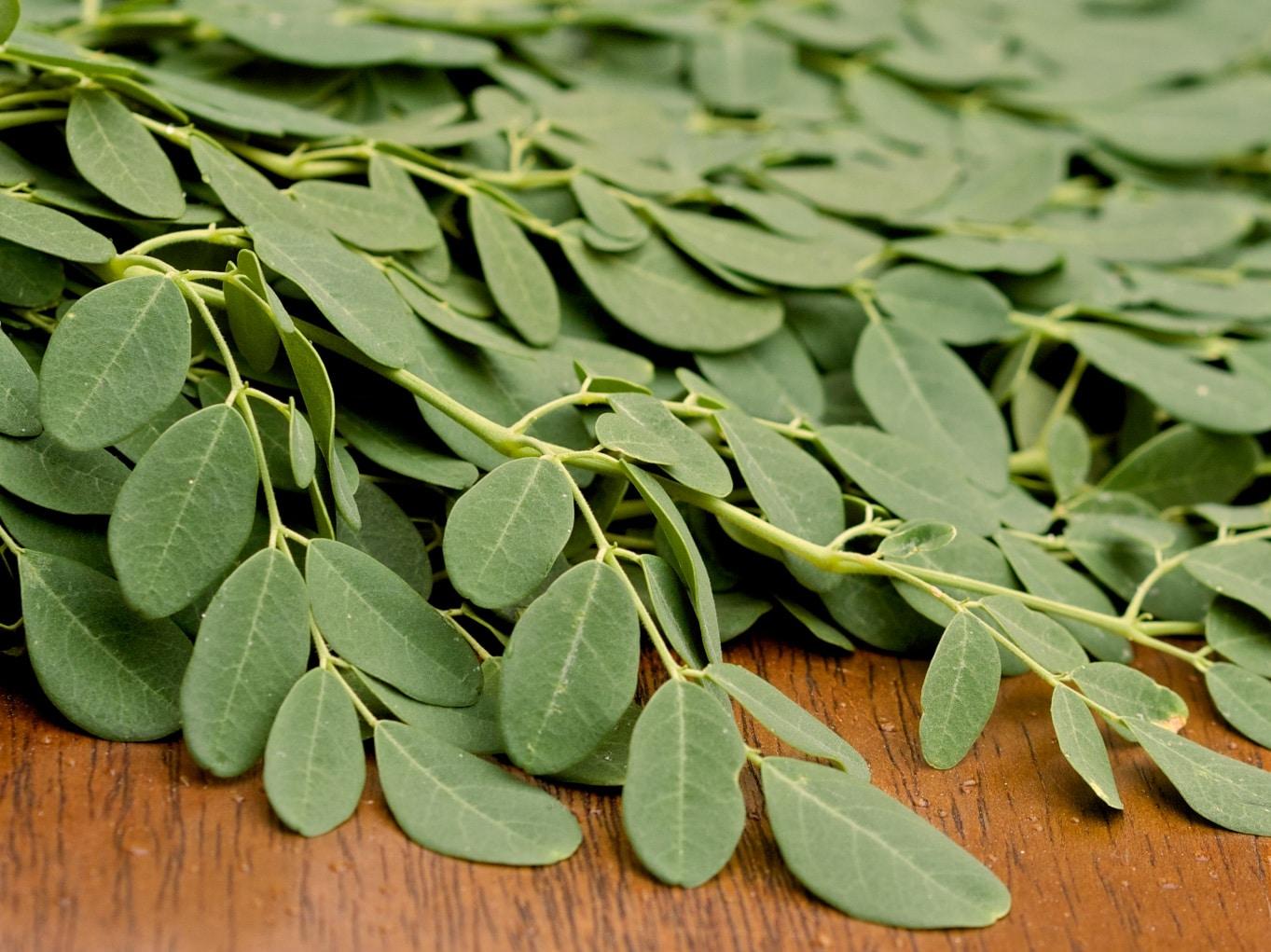 Moringa Recipes How To Eat Moringa Leaves And Powder