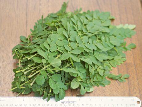 4 oz of Moringa Oleifera Leaves