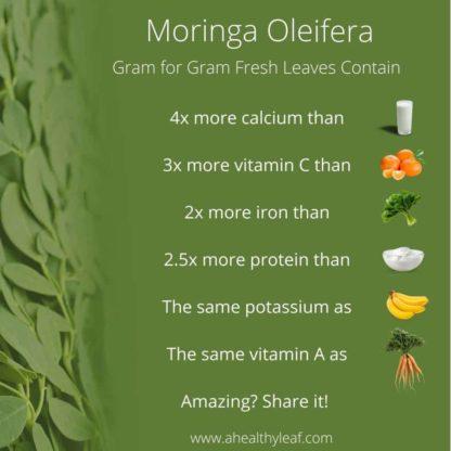 Moringa Fresh Leaves
