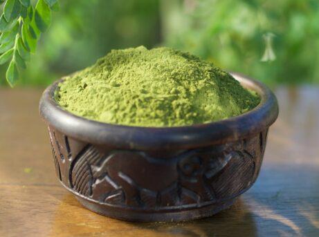 Organic Moringa Leaf Powder A Healthy Leaf