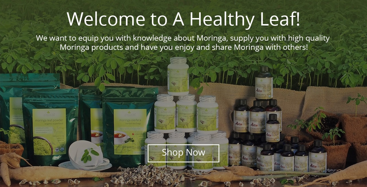 Moringa Capsules, Moringa Tea, Moringa Oil, Moringa Powder, Moringa Seeds and Moringa Trees on Display Table