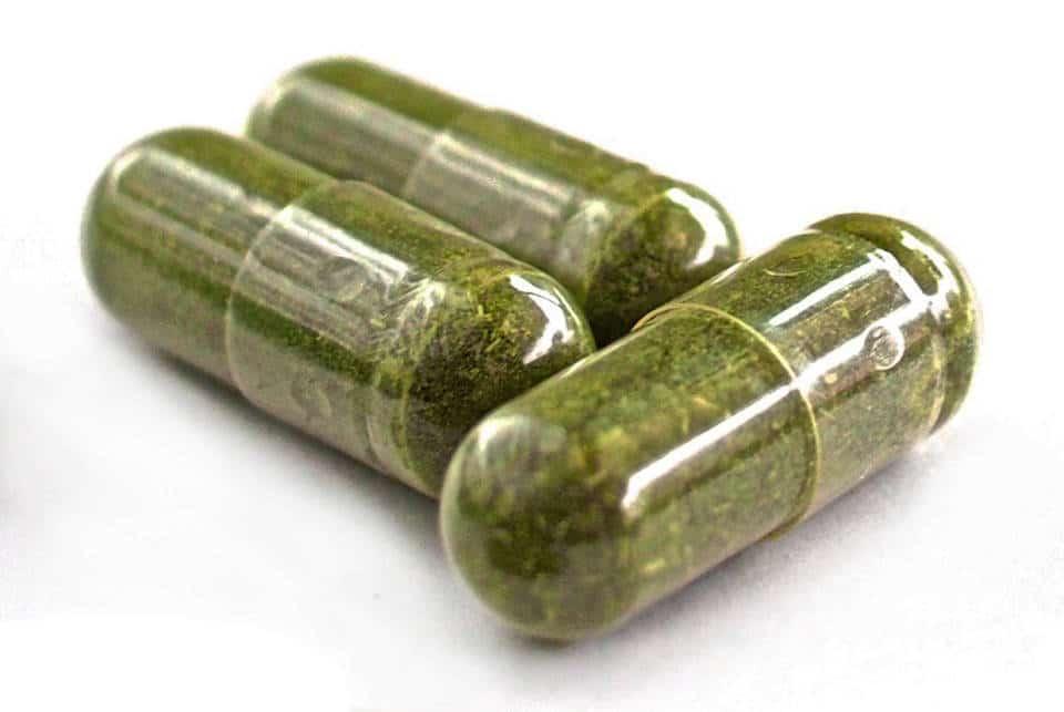 moringa capsules from usda certified organic moringa