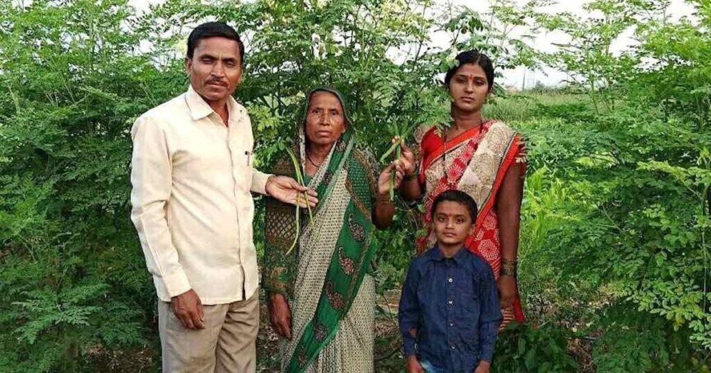 Small Scale Farmers Prosper with Moringa