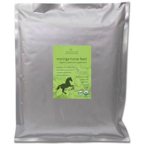 Moringa for Horses