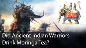 Mauryan Warriors Moringa Tea