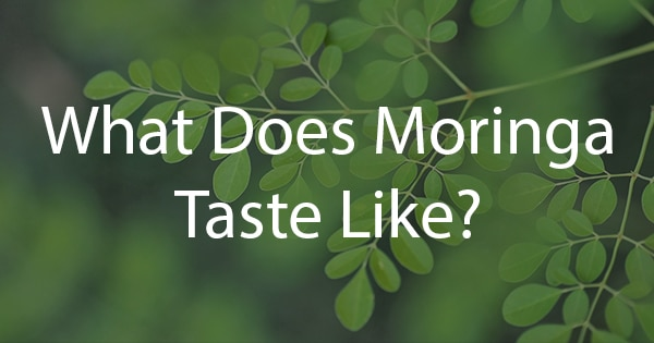 What Does Moringa Taste Like